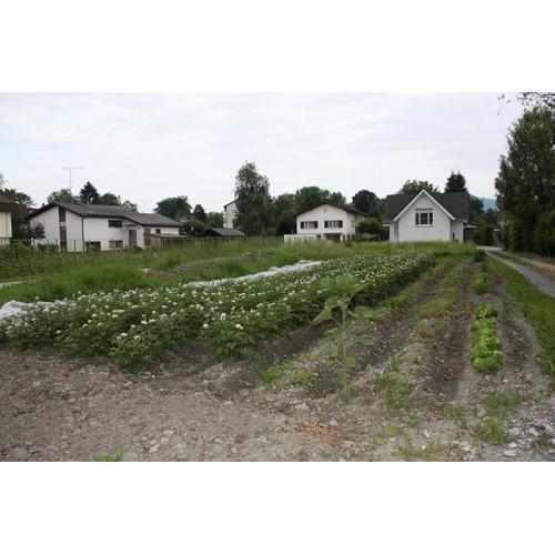 Bild 4 zum Block 2668