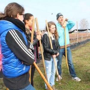 Bild zum Weblog Garten macht Schule